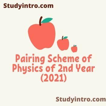 Pairing Scheme of Physics