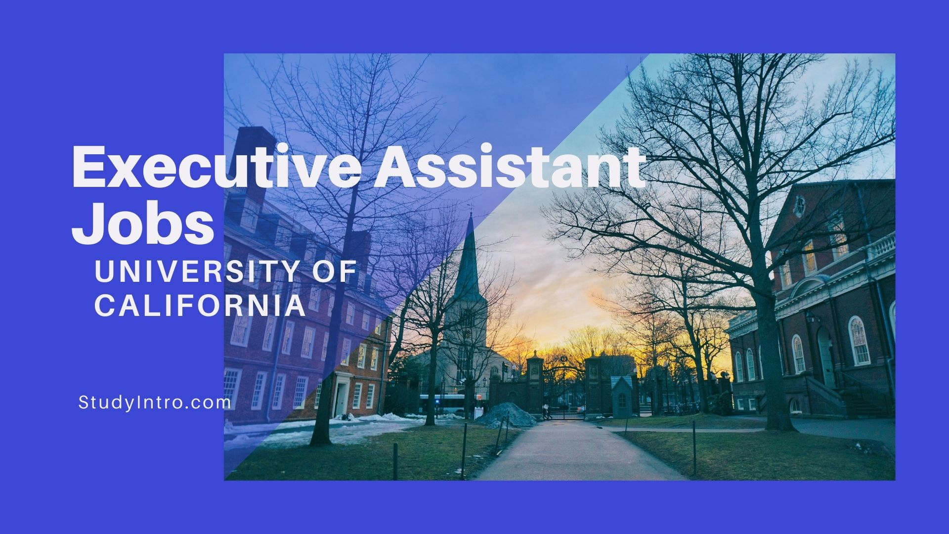 Executive Assistant Job in University of California, Berkeley